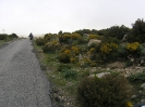 Sardinien 2008