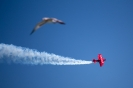 Chicago Air and Water Show_5